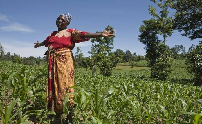 Farmers Partner FG To Provide Tractors,Sprayers, Others